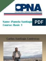 Pamela Diapositiva