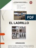 Ladrillera Semi Inustrial