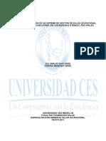 Implementacion_sistema_gestion.pdf
