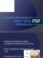 7.08 Tumoresbenignosdenarizysenosparanasales 130204185342 Phpapp02