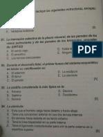 preguntas de anatomia.pdf