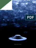 Light Water.pdf