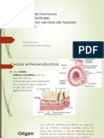 1 Clase Aparato-Digestivo 1ra-Parte
