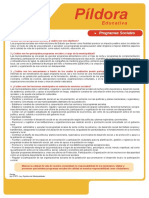1.1. PIP Programas Sociales