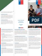Triptico_Consejos_ATE.pdf