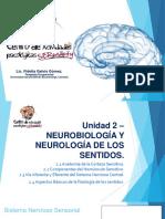 Unidad 2-NEUROBIOLOGÍA Y NEUROLOGÍA DE LOS SENTIDOS.pdf