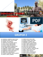 Sangrado Uterino Anormal Nueva Clasificacion FIGO 2011 Español