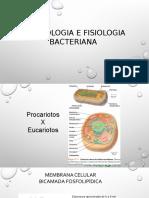 Aula 3_Morfologia e Fisiologia Bacteriana