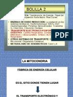 CLASE B Cadena Respiratoria 2011-BOL 2