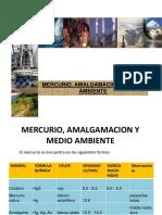 15.Mercurio_Amalgamación y Medio  Ambiente_2016_1.ppt