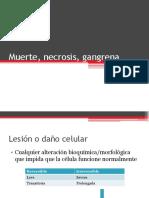 4- Muerte%2c Necrosis%2c Gangrena V