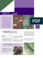 04 Qué es la resistencia genética CIP.pdf