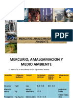Mercurio_Amalgamación y Medio Ambiente_2016_1