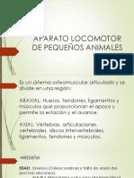 APARATO LOCOMOTOR DE PEQUEÑOS ANIMALES.pptx