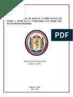 Incidencia de Dengue y Chikungunya de Enero a Junio en La Comunidad San Pedro Del Municipio de Bolpebra