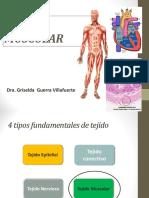 5 CLASE Muscular Griselda (1)
