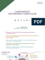4-componente-de-la-autonomia-curricular-27.ppsx