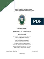 Informe Meliponicultura DG
