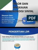 PPT LDR.pptx