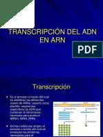 Transcripción.ppt