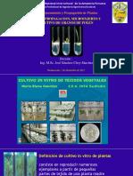 clase 9 Micropropagacion.pdf