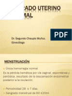 06. Sangrado Uterino Anormal_Dr. Chaupis