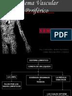 Semiologia Del Sistema Vascular Periferico