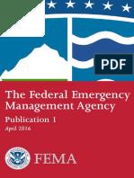 The Federal Emergency Management Agency (FEMA)