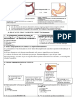 Sistema Digestivo 2018 Doc