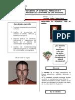 5108927-Simetria-Reflexion-y-Traslacion.pdf