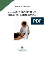 Shiatsu Emocional.pdf