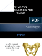 pelvisosea-131111171353-phpapp01
