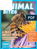 Animal Bites Newsletter #13