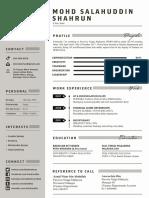 Salahuddin Resume.pdf
