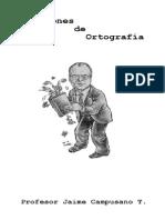 Lecciones de Ortografia.pdf
