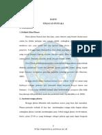 5.BAB II.pdf