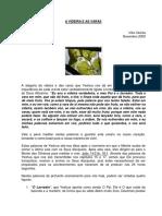 48_A_VIDEIRAeAS_VARAS.pdf