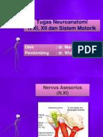 208320513-Tugas-Neuroanatomi-Nervus-XI-Asesorius-Nervus-XII-Hipoglosus-dan-Sistem-Motorik-MAR.pptx