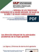 14 La Atencion Integral de Los Principales Problemas de La Mujer Gestante de Salud Del Niño y Salud Cv
