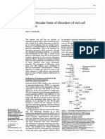 1999, JCP REVIEW the Molecular Basis of Disorders of Red Cell Enzymes