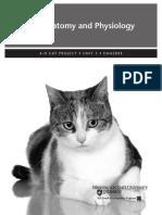 CatProjectUnit3.pdf