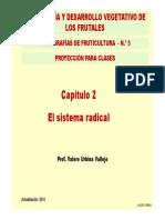 1. El Sistema Radical