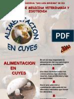 ALIMENTACION CUY - FREDD