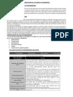 CONSECUENCIAS  DE IMPACTO AMBIENTAL.docx
