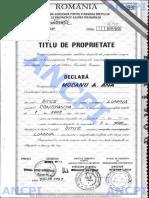 document management.pdf