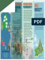 BIODIVERSITY-FLYERS.docx