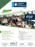 Pedagogia en Educacion Basica