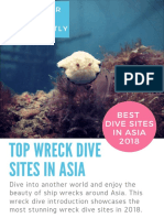 Best diving in Asia - Favorite Wreck Dive Spots in Brunei, Philippines, Borneo & Indonesia (2018)