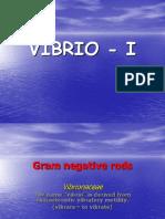 Vibrio