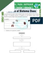 Ficha de Que Es El Sistema Oseo Para Tercero de Primaria (1)